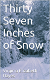 Thirty Seven Inches of Snow