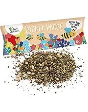 Bienenwiese Blumenmischung, Premium Bienen Saatgut für 100 qm Bienenweide, Bienen und Hummelmagnet von OwnGrown, bienenfreundliche Blumensamen ein- und mehrjährig, 100g Bienensaatgut
