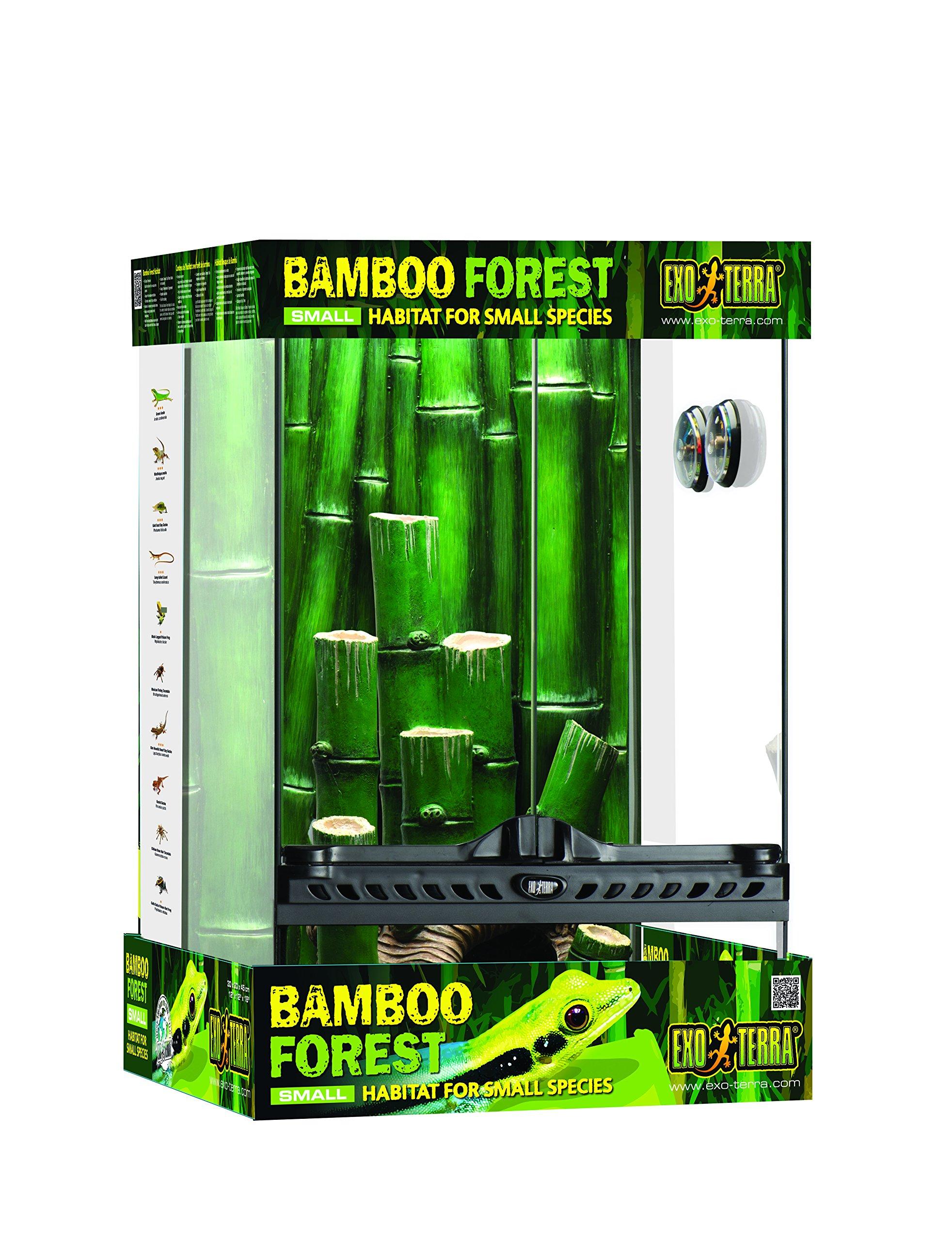Exo Terra Bamboo Forest Terrarium - Small (12x12x18)