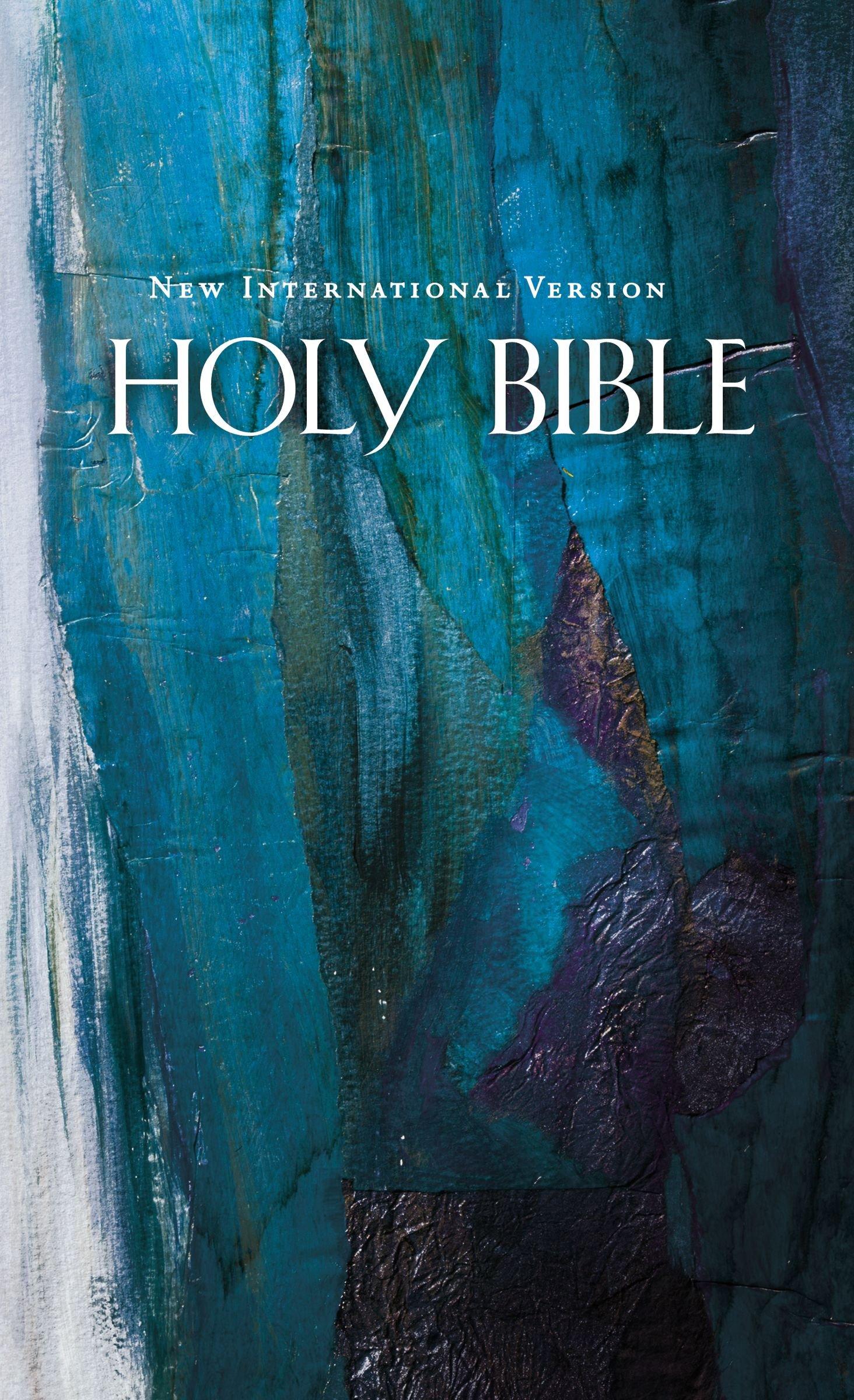 Read Online NIV, Economy Bible, Hardcover, Blue pdf epub