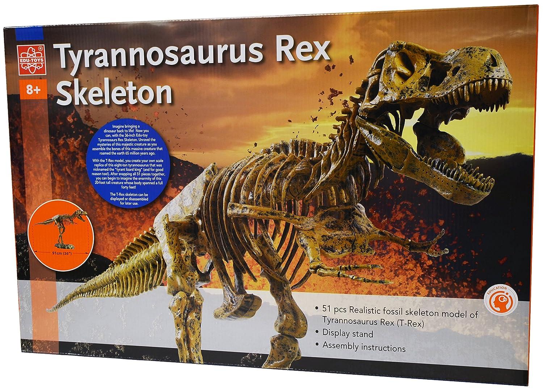 Edu-Toys  Science Tech T-Rex Skeleton 36 Scale Replica Model