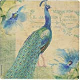 Thirstystone Occasions Coaster, Peacock, Multicolor