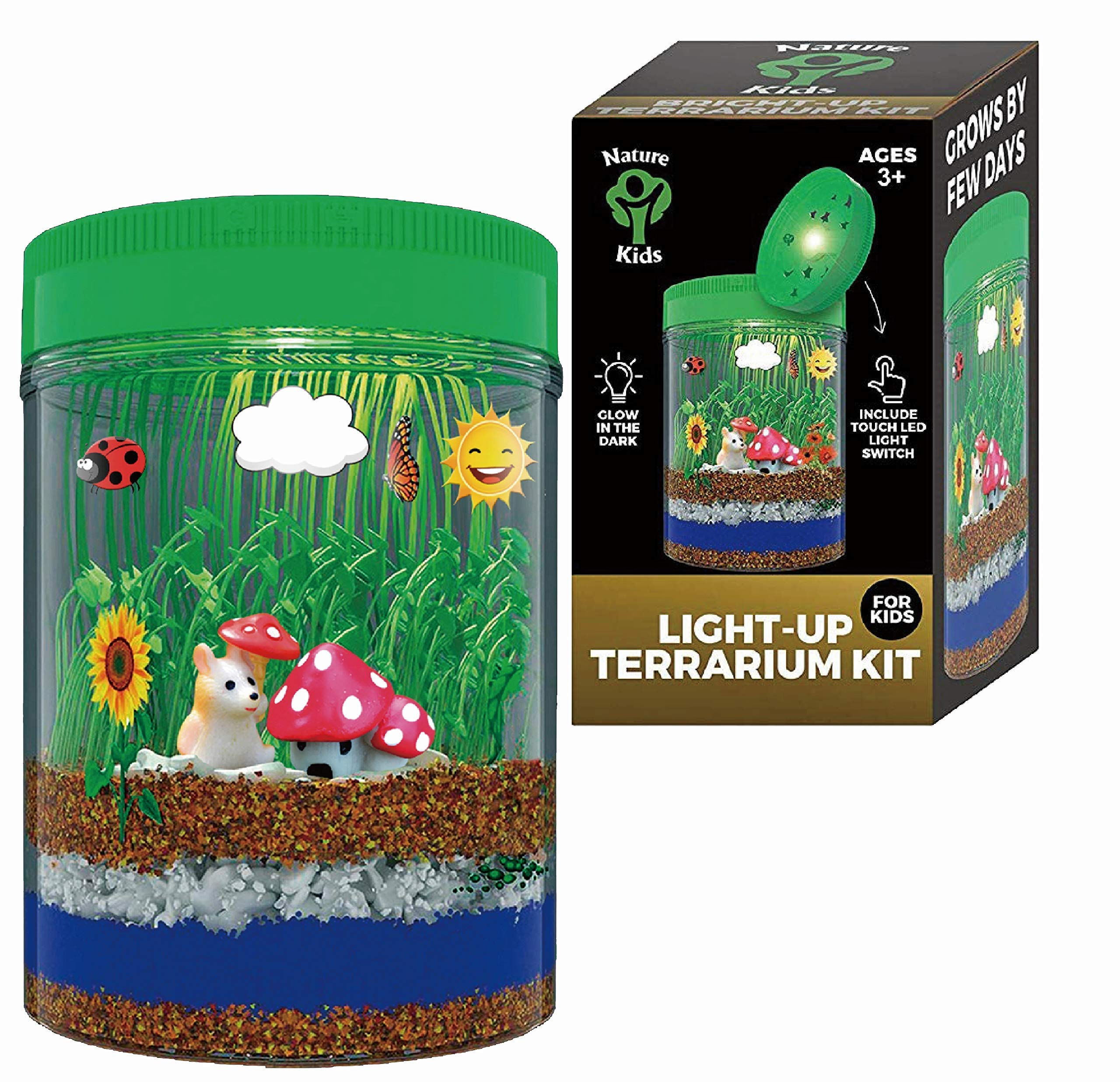 Terrarium Kit for Kids LED Light on Lid - Crafts & Arts Create Customized Mini Garden for Children - Science Kit Gifts for Boys & Girls - Kids Birthday Gifts for Age 3-12 Year Old - Kids Toys by 1ELEGANT