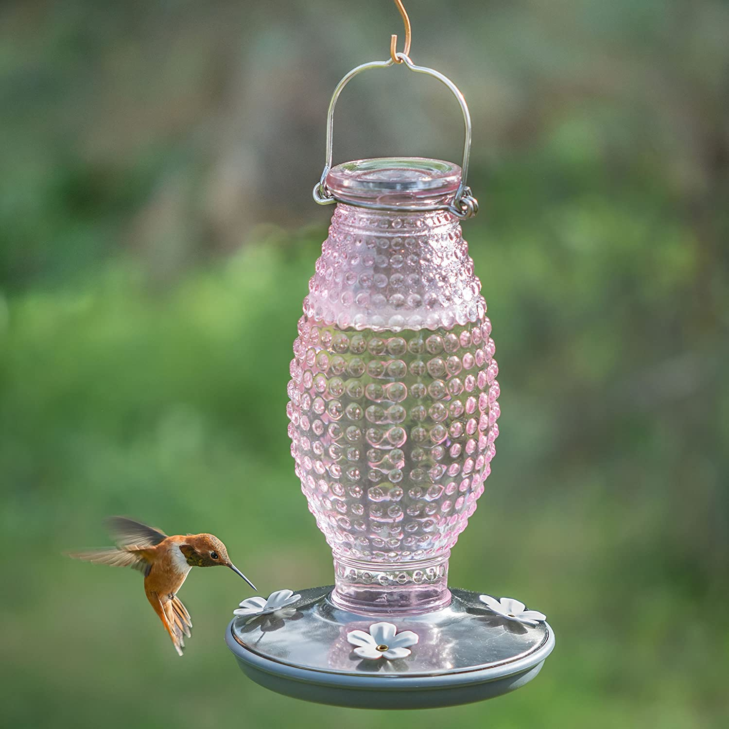 cool impressive for feeders amazon hummingbird full decorative feeder image glass sale blown window wbu