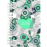 Blueline 2018 DoodlePlanTM Coloring Weekly/Monthly Planner, Botanica Designs, 8 x 5 inches (C2910.01-18)