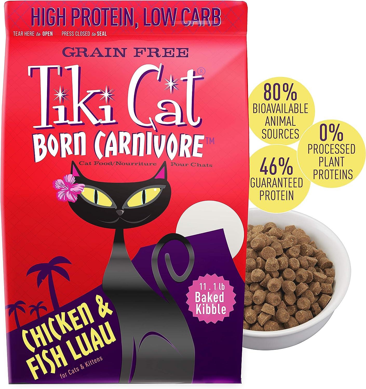 tiki cat born carnivore