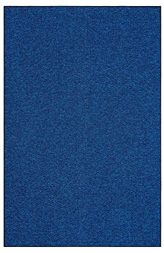 Outdoor Artificial Turf Blue Lagoon Area Rugs with Premium Non Skid Backing Great for Decks, Patio s Gazebo s to Pools, Docks Boats and Other Outdoor Recreational Purposes 5 x8