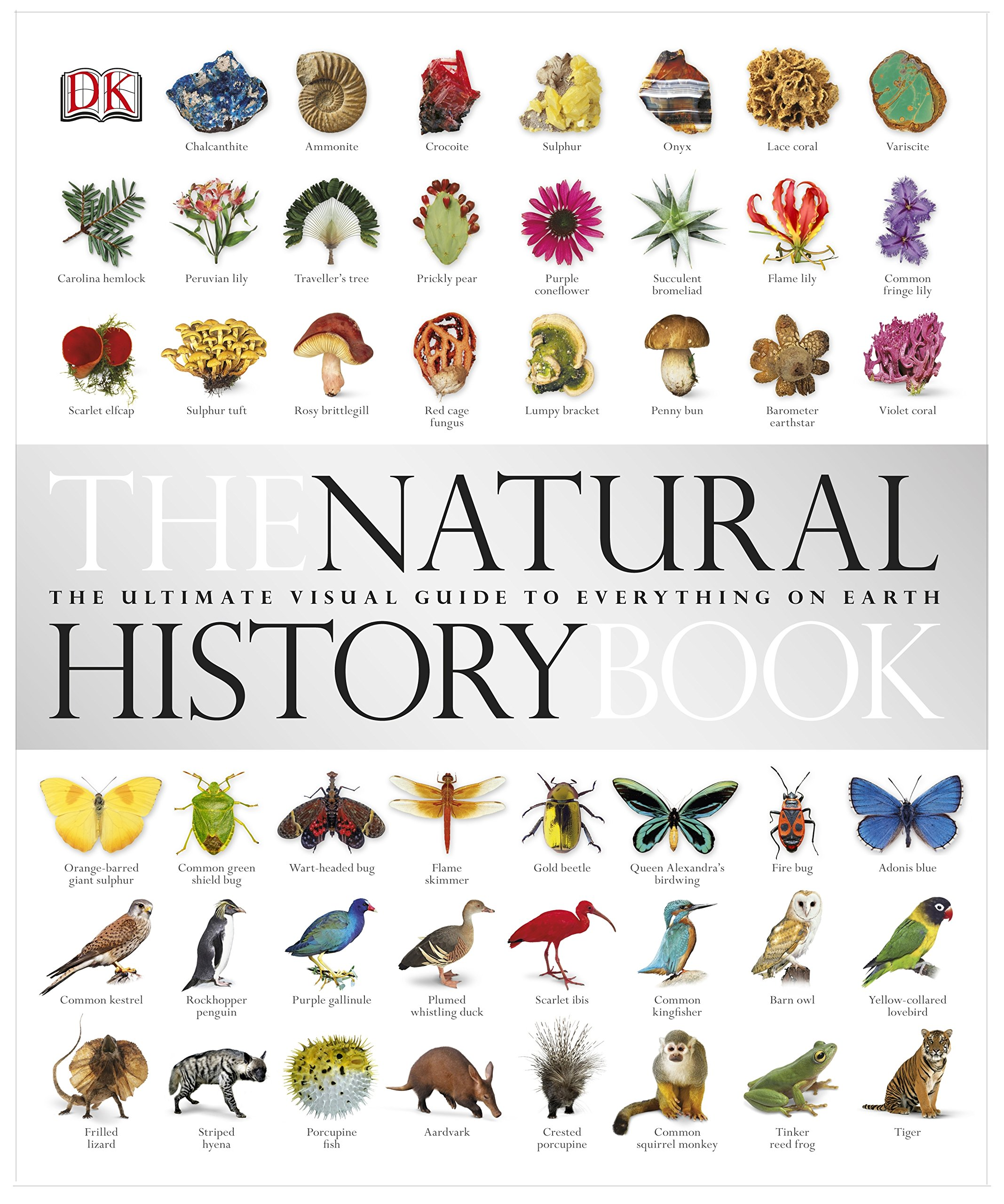 the-natural-history-book-the-ultimate-visual-guide-to-everything-on-earth