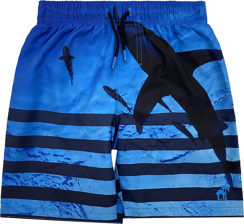 Dreamwave Boys Authentic Character Swim Trunk UPF 50