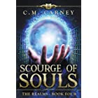 Scourge of Souls: The Realms Book 4: (LitRPG Portal Fantasy Adventure)