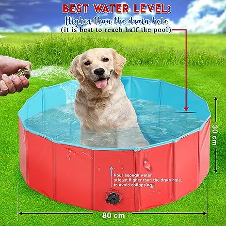 Premium Piscina para Mascotas Plegable 80x30CM - Multifuncional, Portátil, PVC Antideslizante - Bañera para Perros, Perrito, Gatos o como Piscina para Niños ...