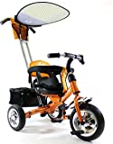 4in1 Lexx Trike Classic Smart Kid's Tricycle 3 Wheel Bike Removable Handle & Canopy NEW GOLD