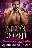Stefan of Caeli (Lords of Magic Book 2)