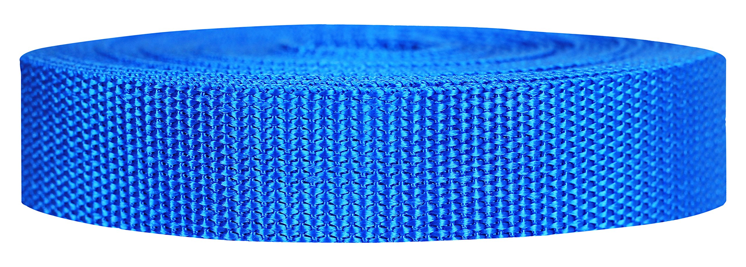 Strapworks Heavyweight Polypropylene Webbing - Heavy Duty Poly Strapping for Outdoor DIY Gear Repair, 1 Inch x 10 Yards - Pacific Blue