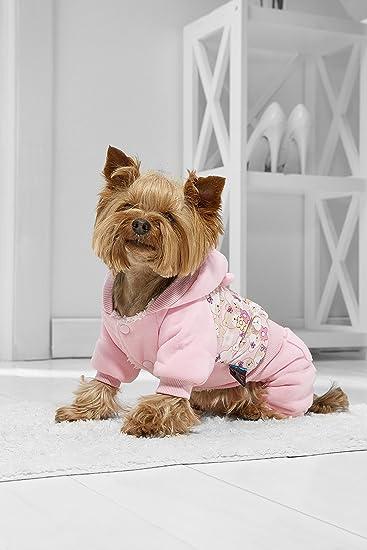 Amazon Com Toy Dog Warm Hoodie For Yorkie Maltese Chihuahua Pom