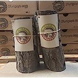 "6"" to 9"" Shiitake Mushroom Log (2 logs per order)"