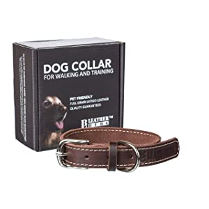 Leatherberg Leather Dog Collar