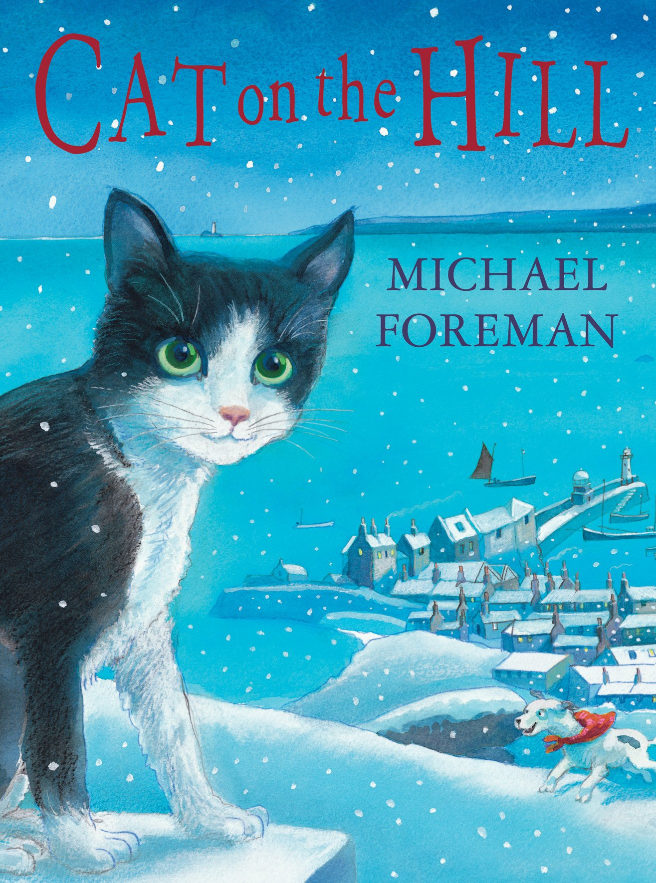 Cat on the Hill: Amazon.co.uk: Foreman, Michael: 9781842704714: Books
