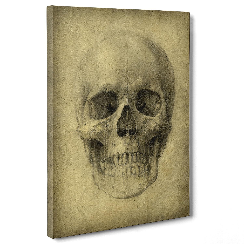 Cuadro sobre lienzo Canvas - ConKrea - Listo para colgar - Leonardo Da Vinci - Studio Anatomía Calavera - Chirurgia: Amazon.es: Hogar