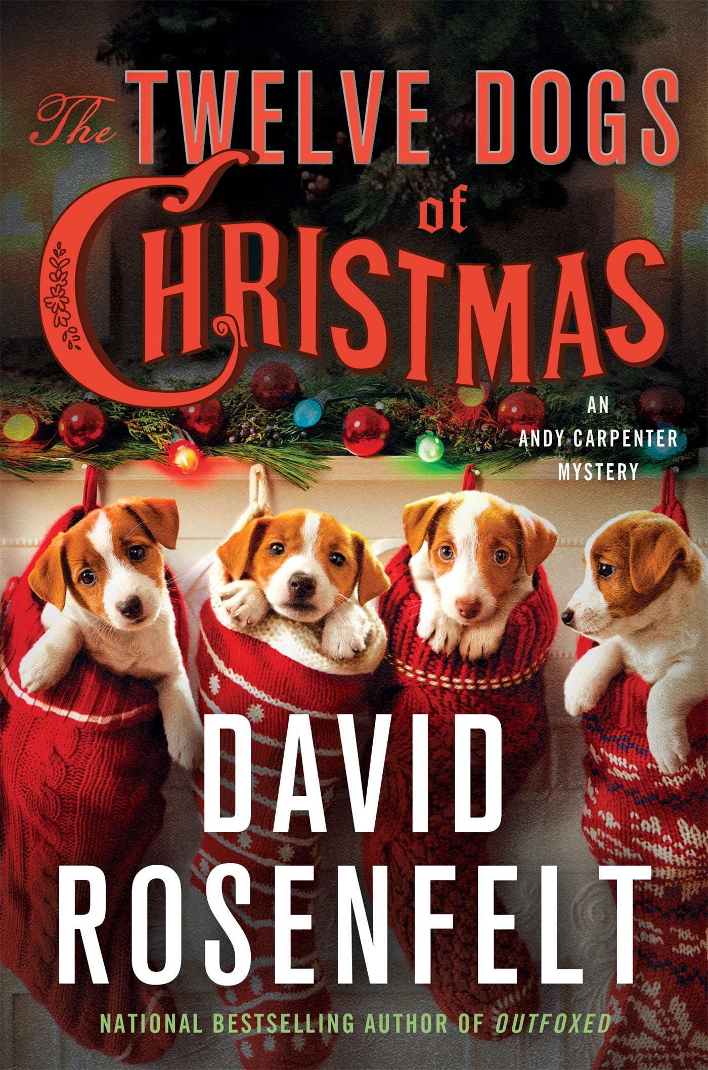 53653ce7 Amazon.com: The Twelve Dogs of Christmas: An Andy Carpenter Mystery ...