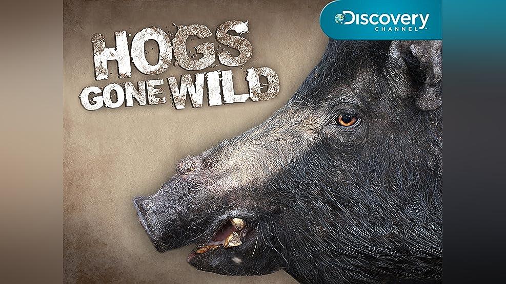 Hogs Gone Wild Season 1