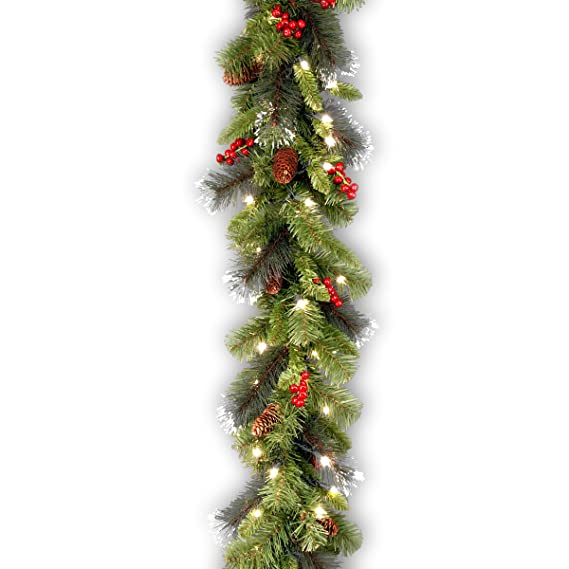 National Tree 9 Foot by 10 Inch Crestwood Spruce Garland with Silver Bristle, Cones, Red Berries and 50 Clear Lights (CW7-306-9A-1) best outdoor Christmas decorations