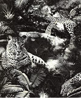Animal Print Tiger Black Silver Wallpaper Amazon Co