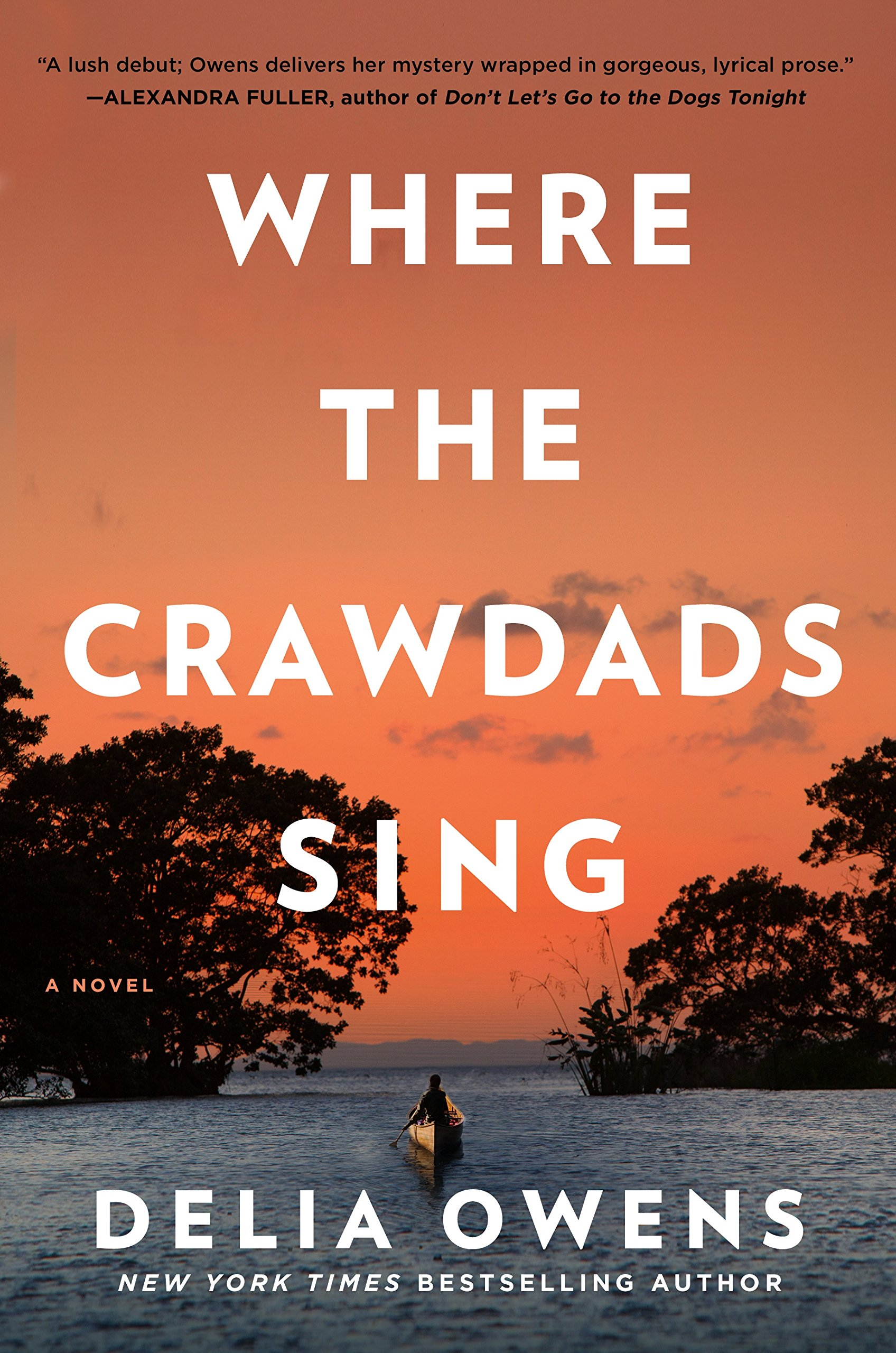 Yorck Wohnideen Gbr where the crawdads sing delia owens 9780735219090 amazon com books
