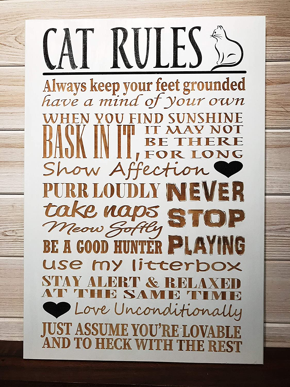 CELYCASY 1217 - Placa de Pared con diseño de Reglas de Gato grabada con láser: Amazon.es: Hogar