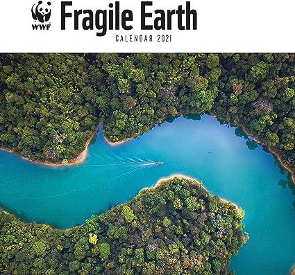 WWF, Fragile Earth Calendario 2021: Amazon.it: Cancelleria e