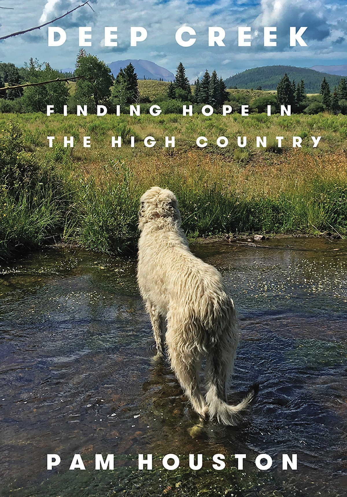 Deep Creek: Finding Hope in the High Country: Houston, Pam ...