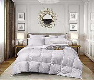 Elle Décor White Feather & White Goose Comforter, Full/Queen