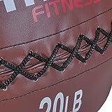 Titan 20 lb Wall Medicine Ball Core Workout
