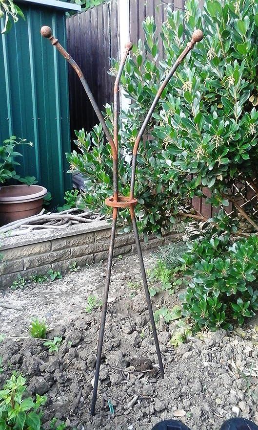 Soporte para plantas trepadoras oxidación hierro jardín obelisco ...