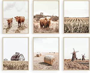 HAUS AND HUES Highland Cow Art and Farmhouse Wall Decor Cow Wall Art and Farmhouse Pictures | Cow Decor | Cow Prints Wall Art | Cow Pictures Wall Decor, (11