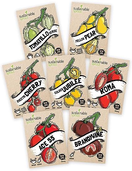 NON GMO Organic seeds Free Shipping Huge Tomato XXL Tomato seeds