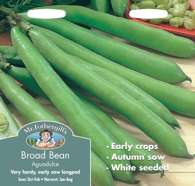 Mr. Fothergill\'s 12609 Aguadulce Broad Bean Seeds Mr Fothergill?s Seeds Ltd