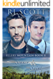 The Sinner and the Saint (Ellery Mountain Book 8)