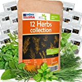 12 Culinary Herb Seeds Pack - Heirloom and Non GMO, Grown in USA - Indoor or Outdoor Garden - Basil, Parsley, Dill, Cilantro,