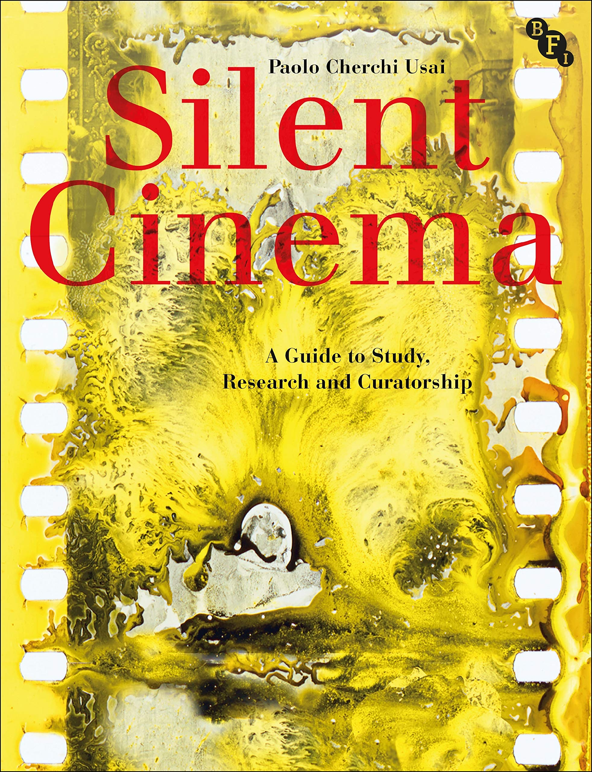 Silent Cinema  A Guide To Study Research And Curatorship
