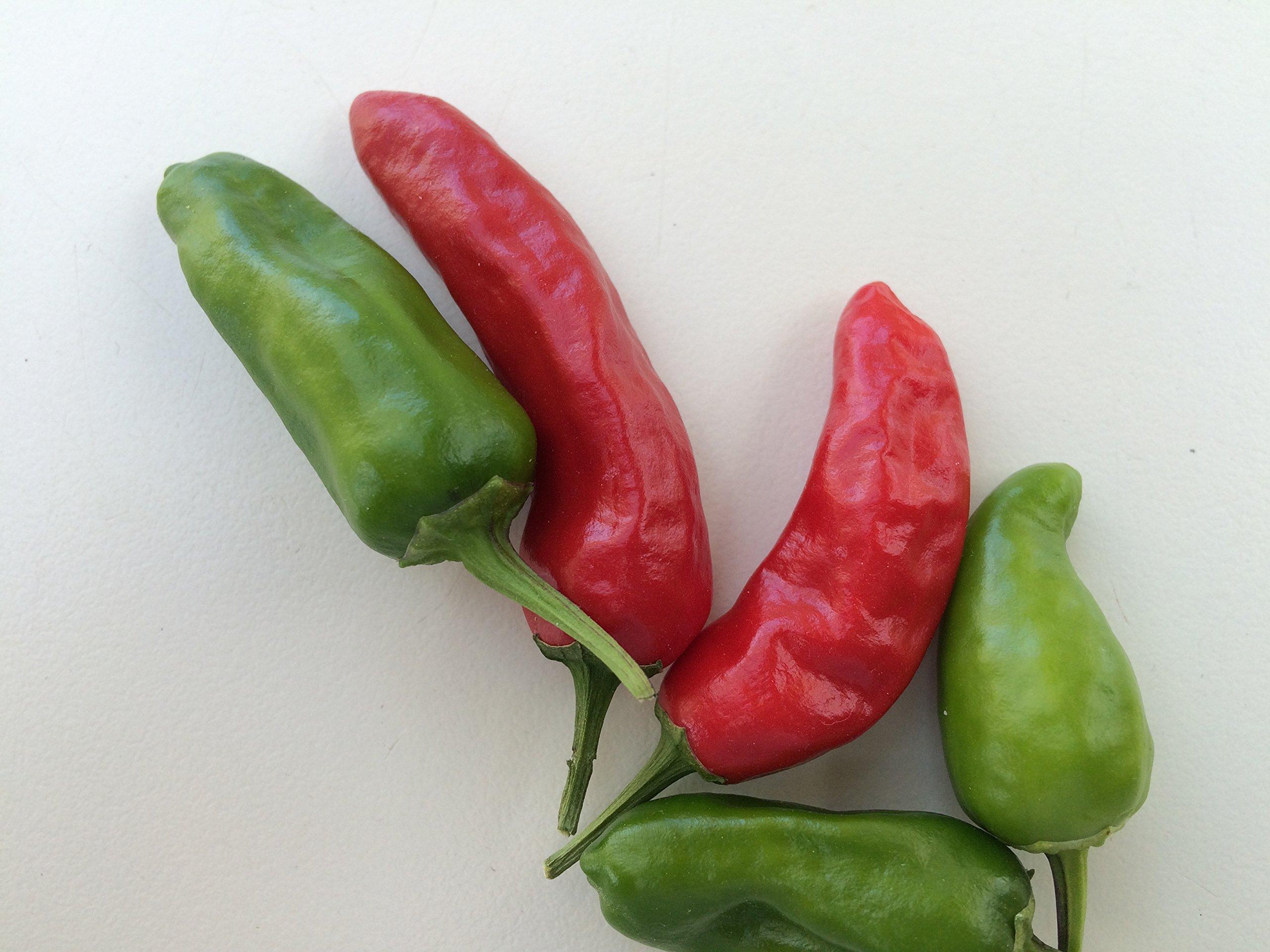 PREMIER SEEDS DIRECT - HOT Chilli Pepper - Apache F1-10 Finest Seeds