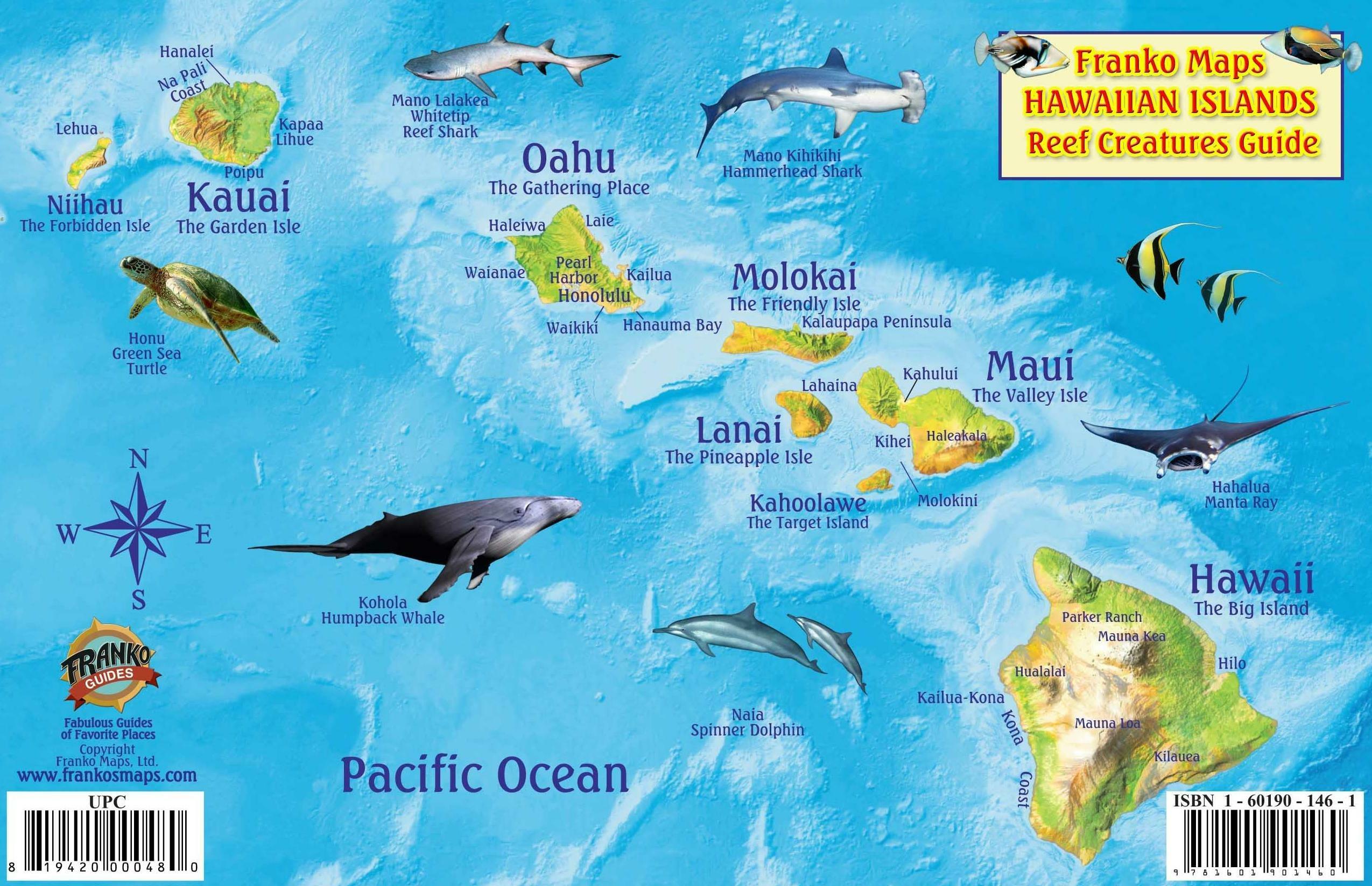 Hawaiian Islands Map & Coral Reef Creatures Guide Franko ... on mauna loa, french polynesia map, oahu map, diamond head, james cook, hawaiian language, honolulu map, caribbean islands map, waikīkī, kauai map, hawaiian island chain, new zealand map, aleutian islands map, tropical island map, necker island, hawaiian island colors, midway atoll, tasmania map, hawaii map, maui map, pacific islands map, big island map, bahamas map, austria map, ford island map, mauna kea, new caledonia map, japan map,