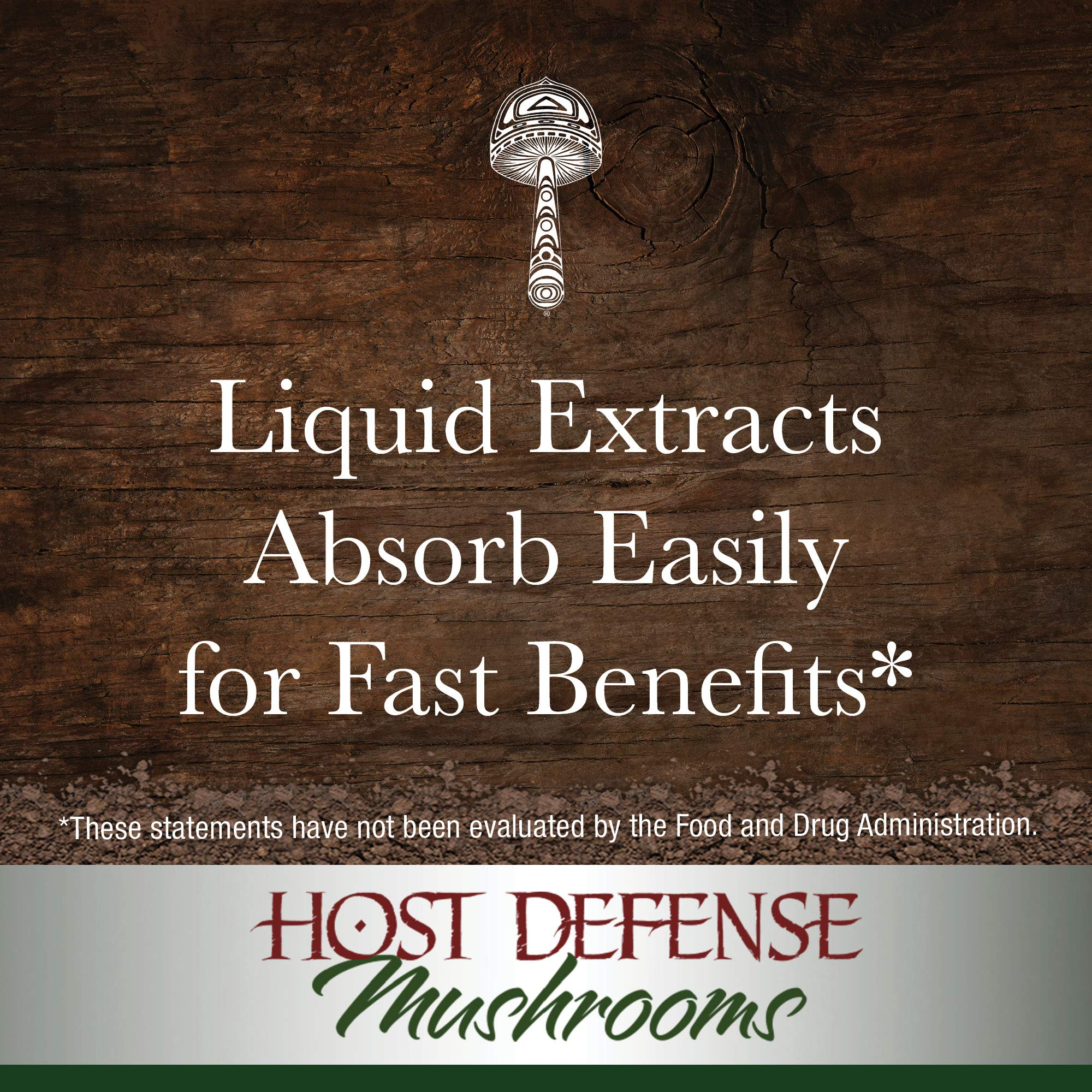 Host Defense - MyCommunity Multi Mushroom Extract, Comprehensive Support for a Robust and Resilient Immune System with Lion's Mane and Turkey Tails, Non-GMO, Vegan, Organic, 120 Servings (4 Ounces) by Host Defense (Image #6)