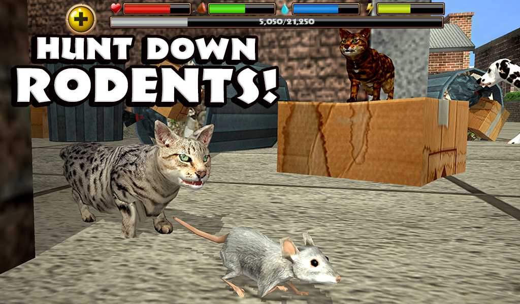 Amazon.com: Stray Cat Simulator: Appstore for Android