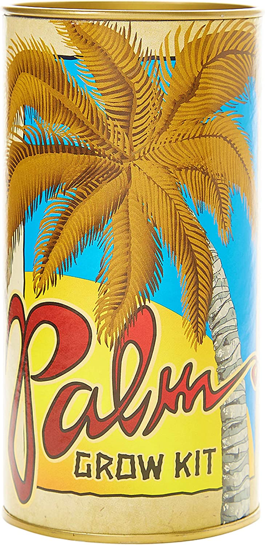 The Jonsteen Company Sabal Palm | Seed Grow Kit
