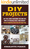 DIY Projects: Save Time & Money Maintaining Your Home With Simple DIY Household Hacks, Home Remedies: Increase Productivity & Save Time with Frugal Living ... And Organizing, Increase Productivity)