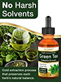 Green Tea Extract (Super Concentrated) | 2 fl oz