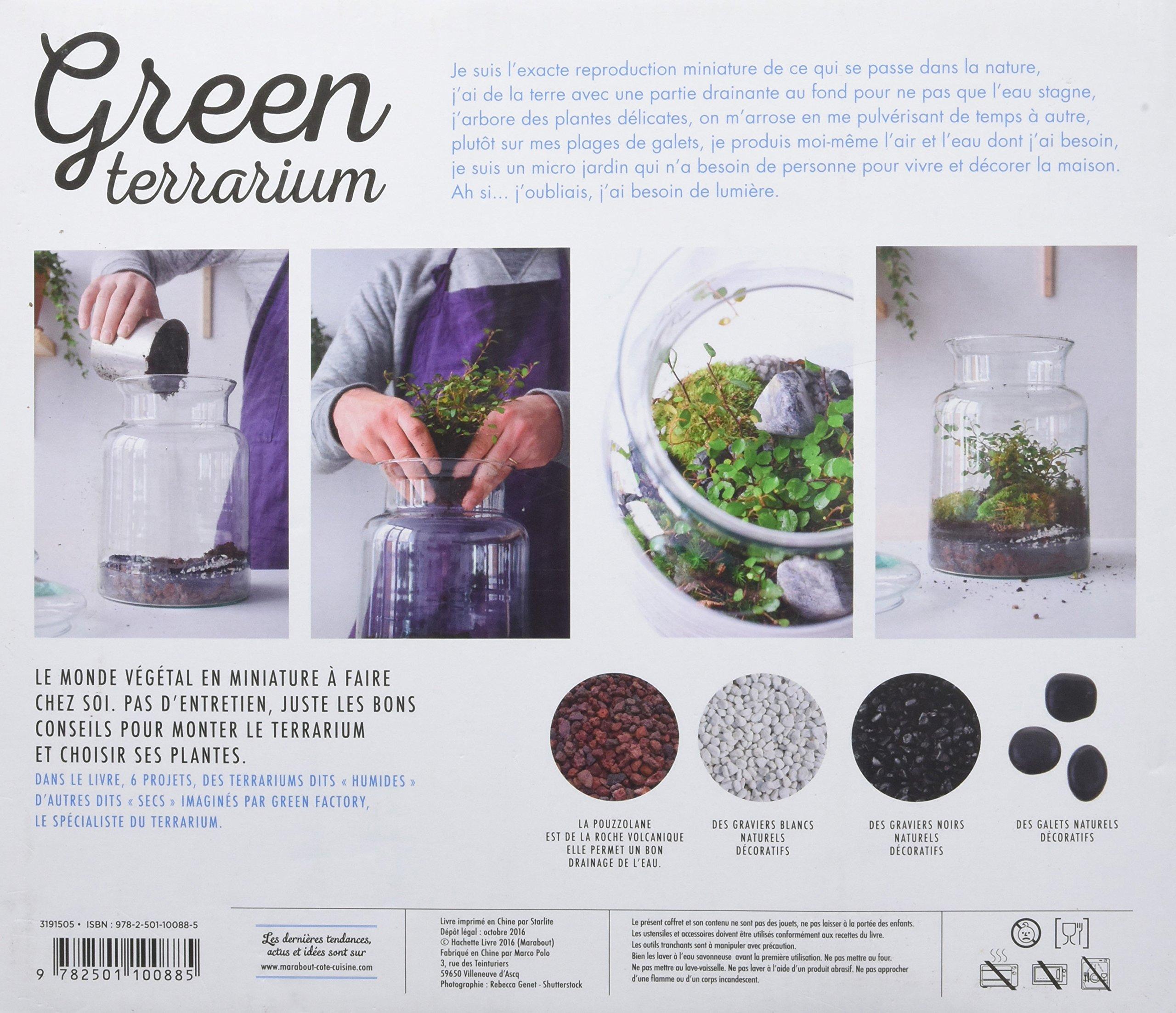 Green Terrarium Contient Un Terrarium En Verre Amazon Co Uk Noam
