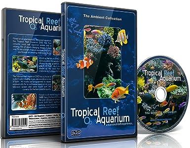Amazon com: Aquarium DVD - Tropical Reef Aquarium - Filmed In HD