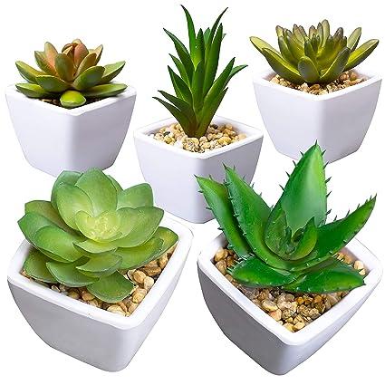 Amazon Com Artificial Succulent Plants For Decoration Fake